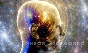 NARADA: Материализация Мысли в 5 Измерении