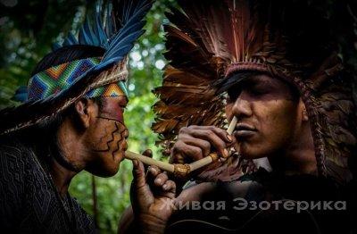 Рапэ - секрет шаманов Амазонии.